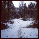 eco-trail 36km
